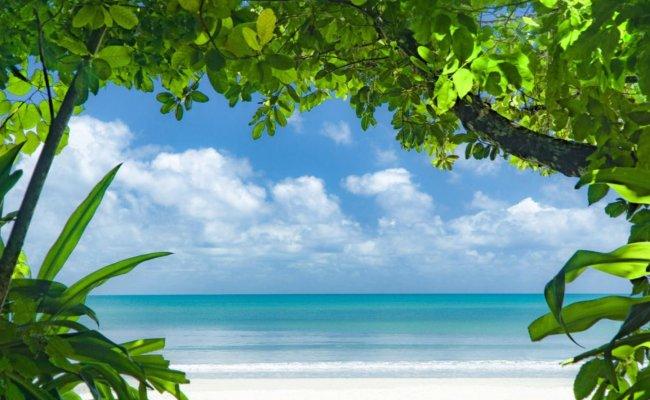 Au cœur de la forêt tropicale et de la Grande Barrière de Corail en éco-resorts